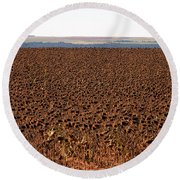 March Of The Sunflowers Round Beach Towel