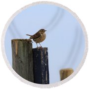 Meadow Pipit Round Beach Towel