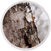 November Birch Round Beach Towel