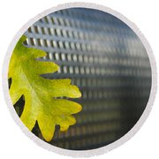Oak Leaf Round Beach Towel