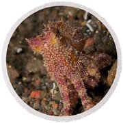 Ocellate Octopus With Two Blue Spots Round Beach Towel