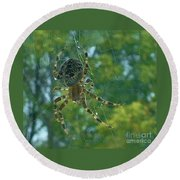 Orb Spider      Summer           Indiana Round Beach Towel