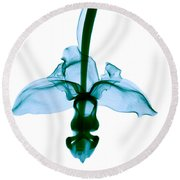 Orchid Flower Round Beach Towel