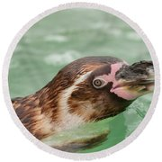 Penguin Round Beach Towel by Tom Gowanlock