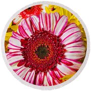 Pink And Yellow Mums Round Beach Towel