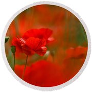 Poppy Flowers 02 Round Beach Towel