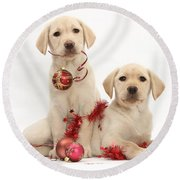 Puppies At Christmas Round Beach Towel