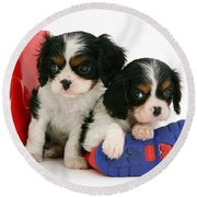 Puppies With Rain Boots Round Beach Towel