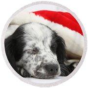 Puppy Sleeping In Christmas Hat Round Beach Towel