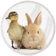 Rabbit And Duckling Round Beach Towel