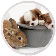 Rabbit And Spaniel Pups Round Beach Towel