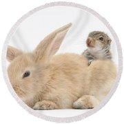 Rabbit And Squirrel Round Beach Towel
