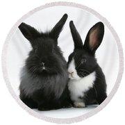Rabbits Round Beach Towel