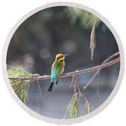 Rainbow Bee-eater V4 Round Beach Towel