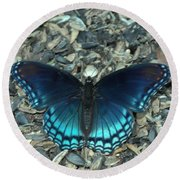 Red Spotted Purple Swallowtail Butterfly Round Beach Towel
