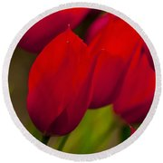 Red Tulips In Holland Round Beach Towel