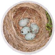 Red-winged Blackbird Nest Round Beach Towel