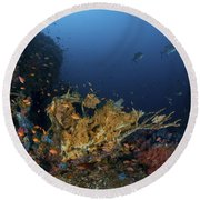 Reef Scene With Coral And Fish Round Beach Towel