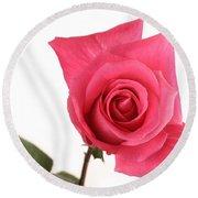 Rose Blooming Round Beach Towel