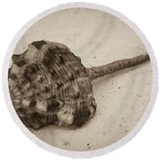 Sepia Shell Round Beach Towel