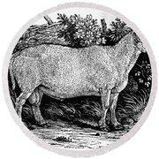 Sheep, C1800 Round Beach Towel