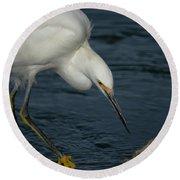 Snowy Egret 8 Round Beach Towel