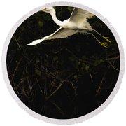 Snowy Egret, Florida Round Beach Towel