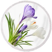 Spring Crocus Flowers Round Beach Towel