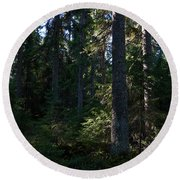 Spruces Round Beach Towel