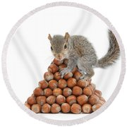Squirrel And Nut Pyramid Round Beach Towel