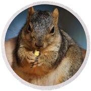Squirrel Eating Corn Round Beach Towel