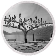 sycamore trees in Ascona - Ticino Round Beach Towel