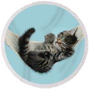 Tabby Kitten In Hammock Round Beach Towel
