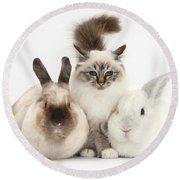 Tabby-point Birman Cat And Rabbits Round Beach Towel