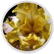 Tall Bearded Iris Named Butterfingers Round Beach Towel