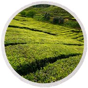 Tea Gardens Round Beach Towel