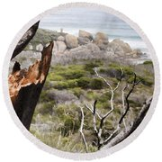The Death Of A Tree V2 Round Beach Towel