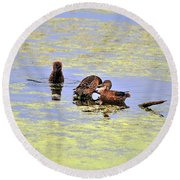 Three Of A Kind Round Beach Towel