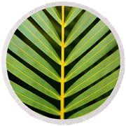 Tropical Palm Frond Round Beach Towel