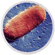 Tuberculosis Bacillum Round Beach Towel