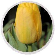 Tulip Named Big Smile Round Beach Towel