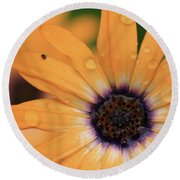 Untitled Round Beach Towel