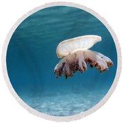 Upside Down Jellyfish In Caribbean Sea Round Beach Towel