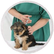Vet Giving Pup Its Primary Vaccination Round Beach Towel