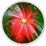 Vibrant Round Beach Towel