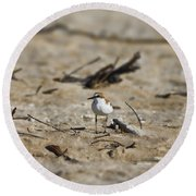 Wading Bird Round Beach Towel