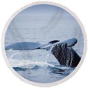 Whales Fluke Round Beach Towel