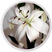 White Lily In Macro Round Beach Towel