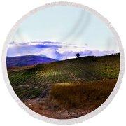 Wine Vineyard In Sicily Round Beach Towel