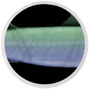 X-ray Of An Atlantic Mackerel Round Beach Towel